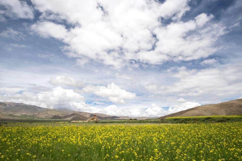Paisaje tibetano fotos de archivo