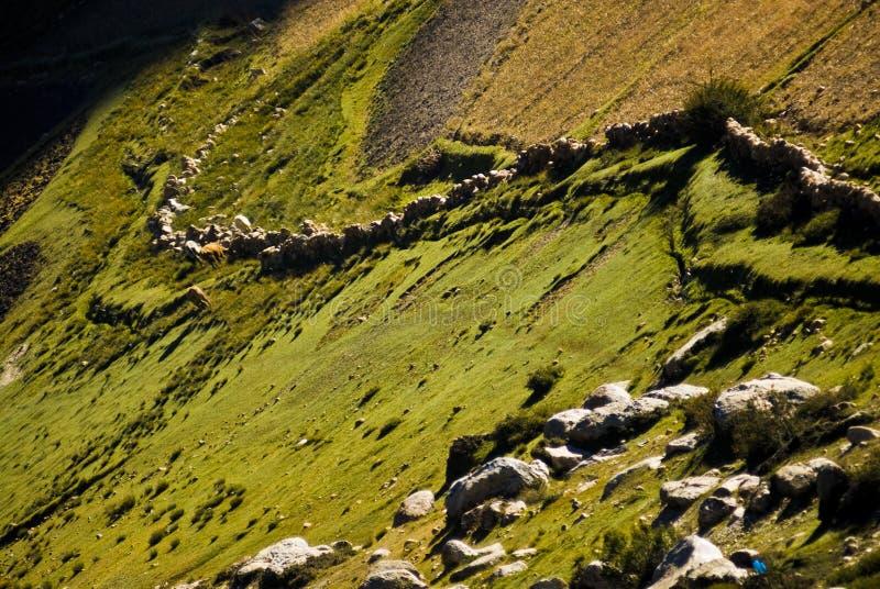 Paisaje tibetano imagen de archivo