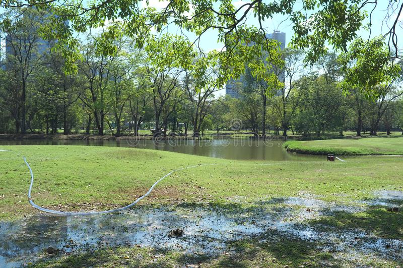 Paisaje tirado en el parque NINGÚN 2 fotos de archivo