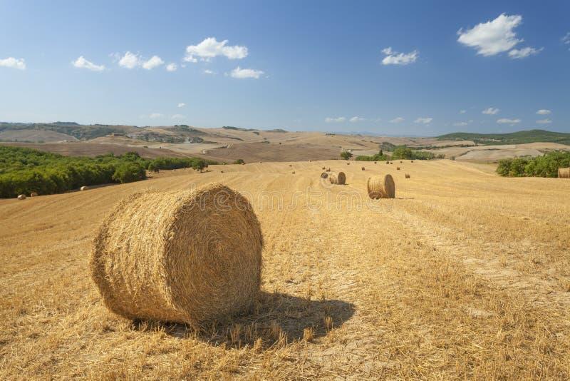 Paisaje, Toscana Val D'Orcia fotografía de archivo libre de regalías