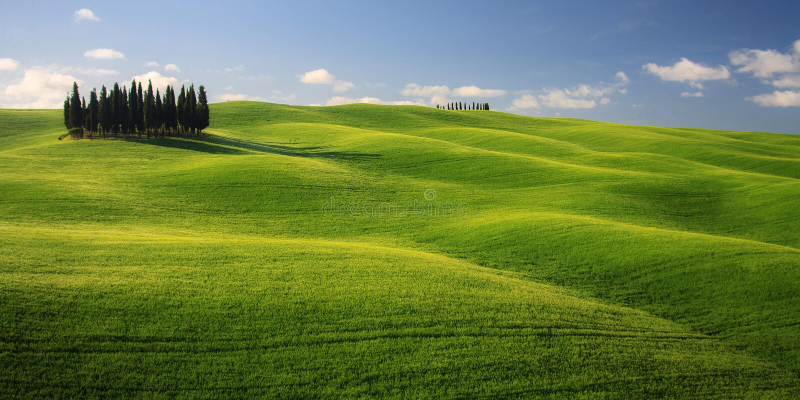 Paisaje toscano con Cypress y el cielo azul fotos de archivo