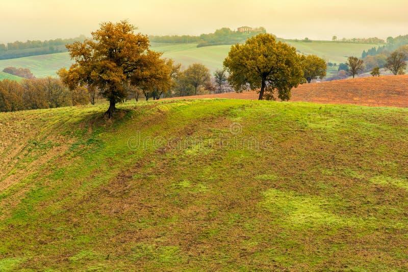 Paisaje toscano del otoño imagen de archivo