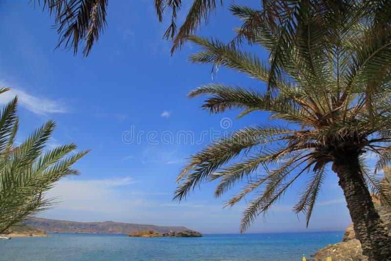 Download Paisaje tropical foto de archivo. Imagen de cartel, paraíso - 41907620