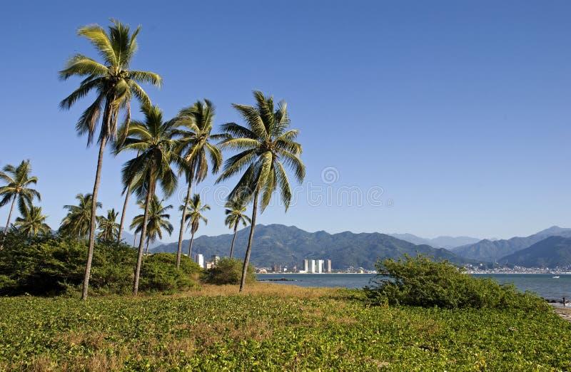 Paisaje tropical en la Costa del Pacífico imagen de archivo libre de regalías