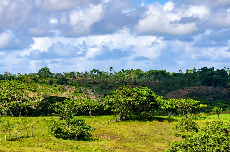 Paisaje tropical hermoso con la vegetación verde imagen de archivo