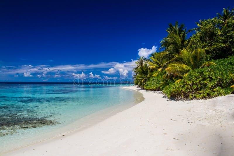 Paisaje tropical hermoso de la playa en Maldivas fotografía de archivo