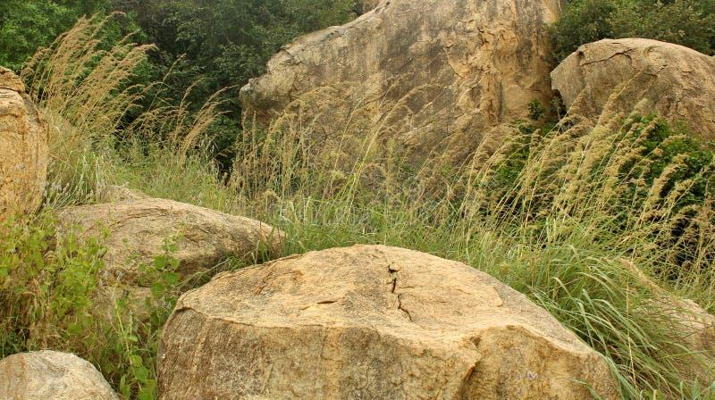 Paisaje tropical maravilloso de la colina del complejo sittanavasal del templo de la cueva imagenes de archivo