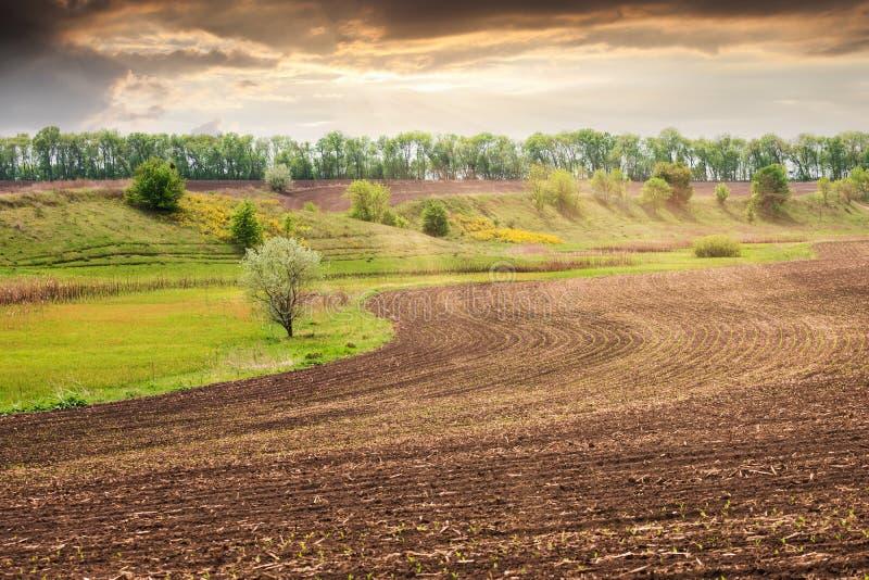 Paisaje ucraniano hermoso con un campo de la primavera después de plantar fotografía de archivo libre de regalías