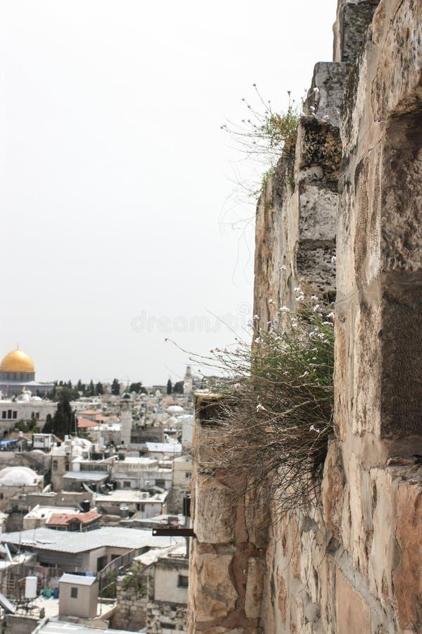 Paisaje urbano de la ciudad de Jerusalén con la Explanada de las Mezquitas foto de archivo