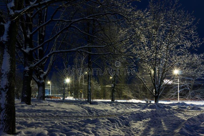 Paisaje urbano de la noche en el invierno, cubierto todo con nieve Mogilev Belaru foto de archivo
