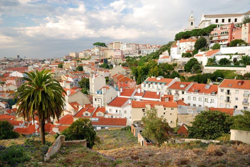 Paisaje urbano de Lisboa con la palma imágenes de archivo libres de regalías