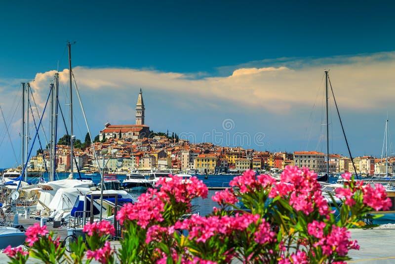 Paisaje urbano espectacular con la ciudad vieja de Rovinj, región de Istria, Croacia, Europa imagen de archivo libre de regalías
