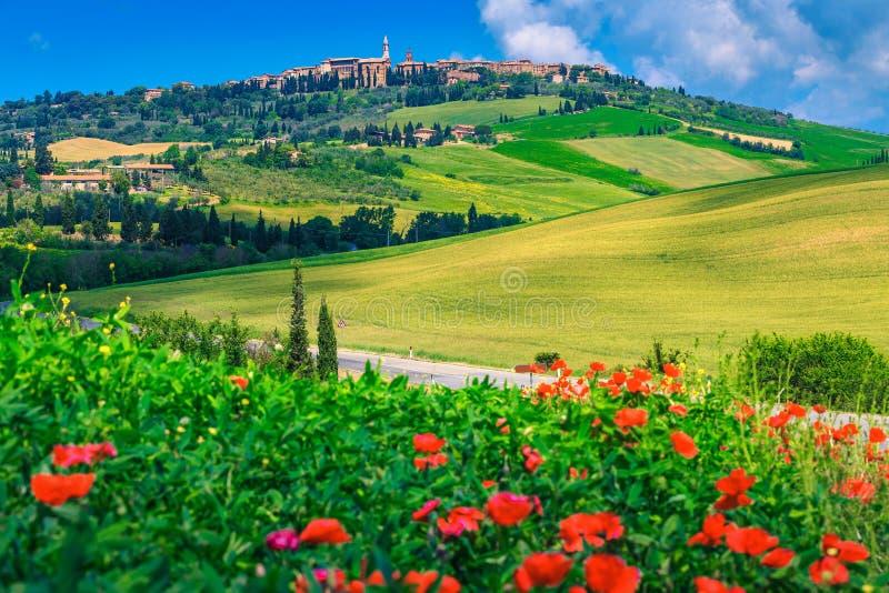 Paisaje urbano espectacular y amapolas rojas florecientes, Pienza, Italia, Europa de Toscana imágenes de archivo libres de regalías