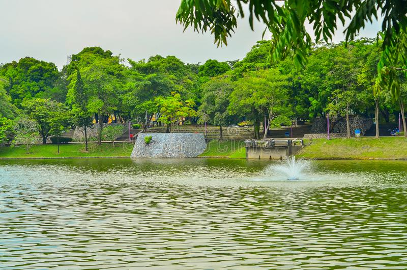 Paisaje verde con el lago imagen de archivo