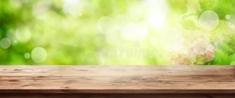 Paisaje verde de la primavera con la tabla de madera imagen de archivo libre de regalías