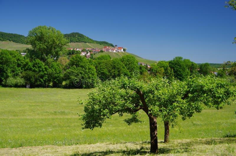 Paisaje verde del verano con el cielo azul de acero en Alemania meridional fotografía de archivo