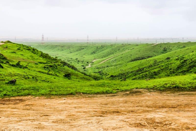 Paisaje verde enorme, árboles y montañas de niebla en el centro turístico de Ayn Khor, Salalah, Omán fotografía de archivo libre de regalías