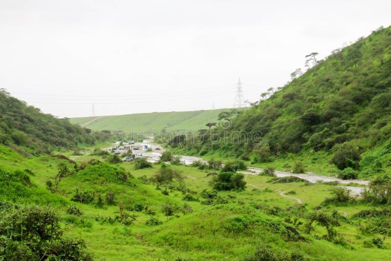 Paisaje verde enorme, ?rboles y monta?as de niebla en el centro tur?stico de Ayn Khor, Salalah, Om?n imagen de archivo libre de regalías