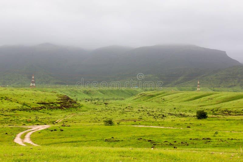 Paisaje verde enorme, ?rboles y monta?as de niebla en el centro tur?stico de Ayn Khor, Salalah, Om?n imagenes de archivo