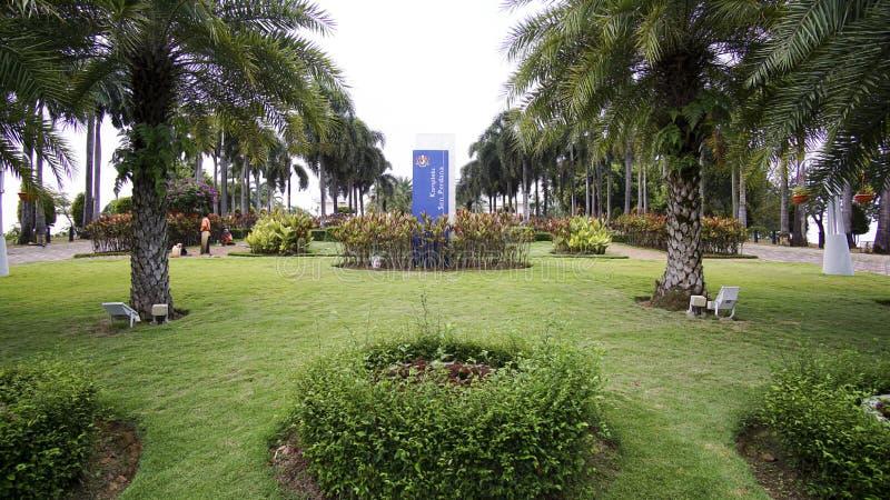 Paisaje verde hermoso en Putrajaya Malasia foto de archivo libre de regalías