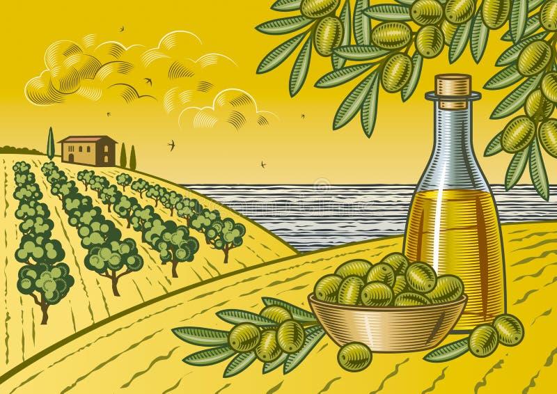Paisaje verde oliva de la cosecha stock de ilustración