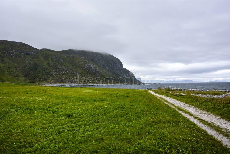 Paisaje verde y trayectoria en Noruega foto de archivo