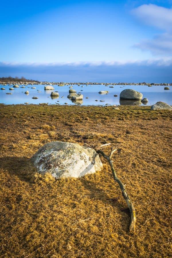 Paisaje vertical de la costa sueca en febrero fotos de archivo libres de regalías