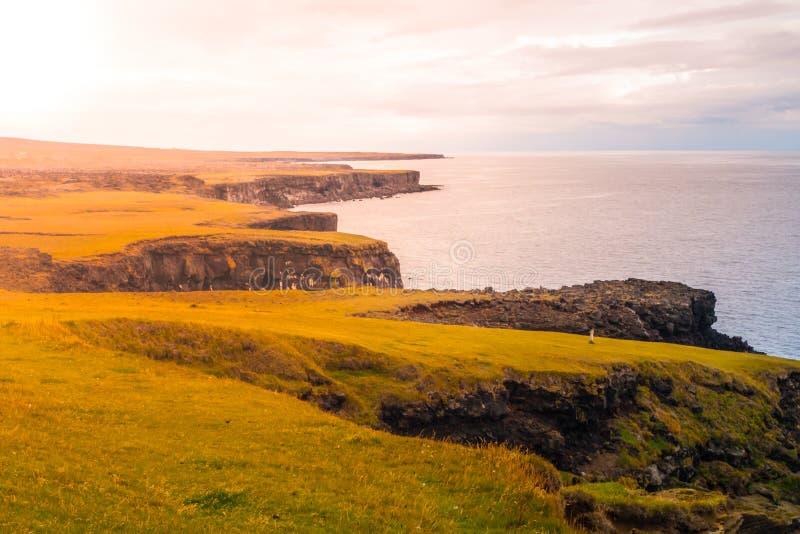 Paisaje volcánico con los llanos verdes y la costa rocosa en la península de Snaefellsnes, Islandia fotos de archivo libres de regalías