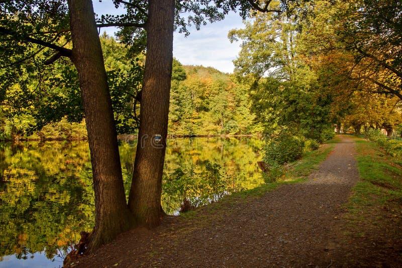 Paisaje y charca del otoño imagenes de archivo