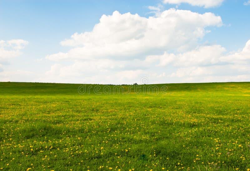 Paisaje y cielo de la pradera fotografía de archivo libre de regalías