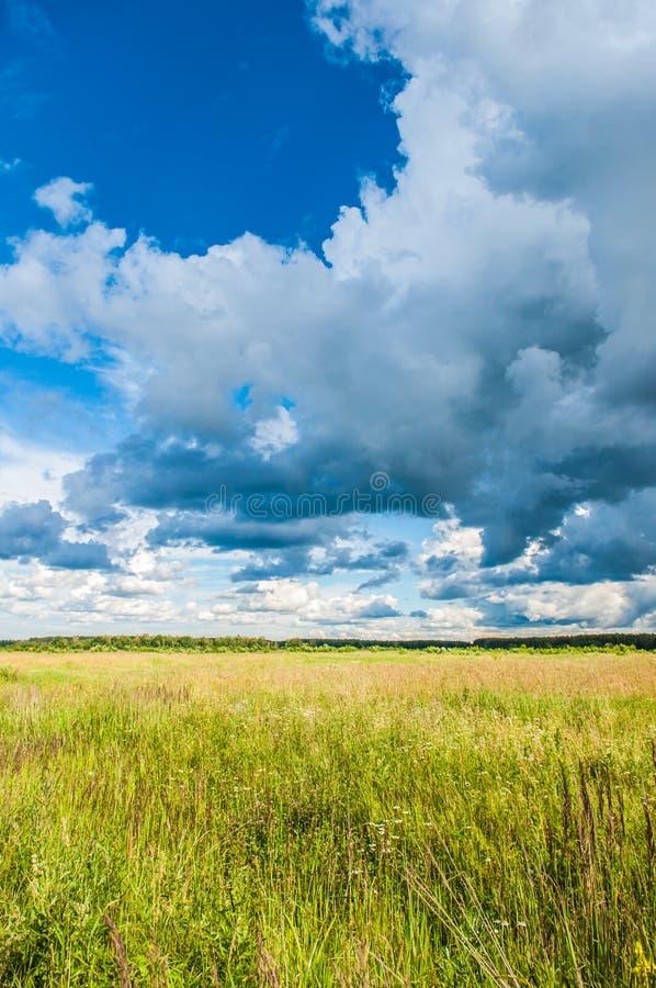 Paisaje y cielo de la pradera imagen de archivo