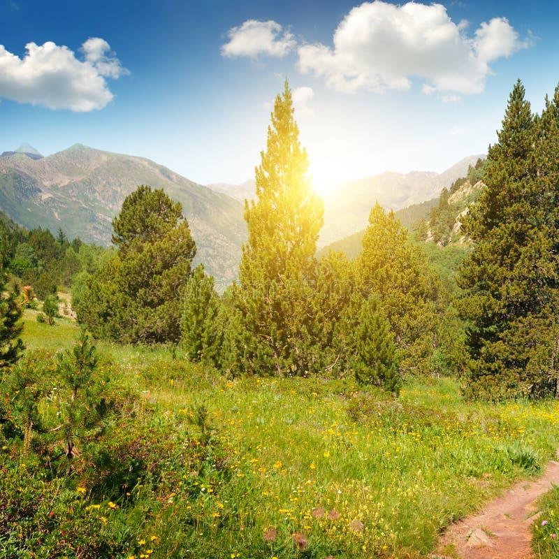 Download Paisaje Y Salida Del Sol De La Montaña Foto de archivo - Imagen de nube, bosque: 64207384