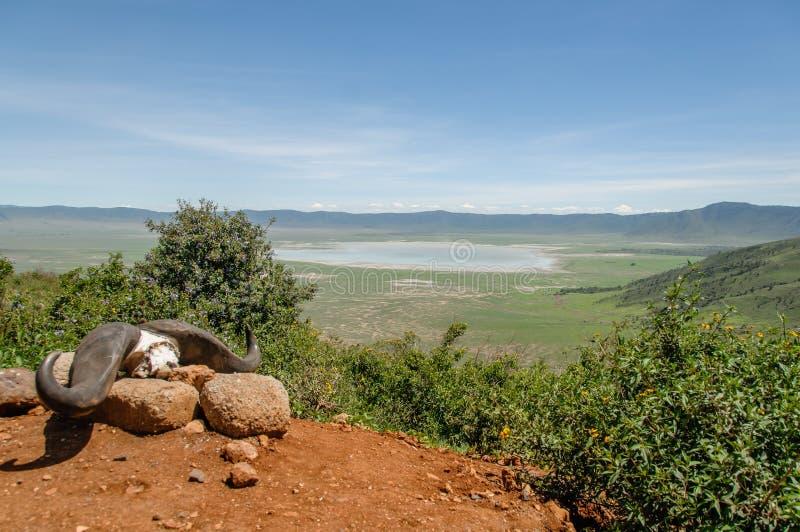 Paisajes africanos - área Tanzania de la protección de Ngorongoro foto de archivo libre de regalías