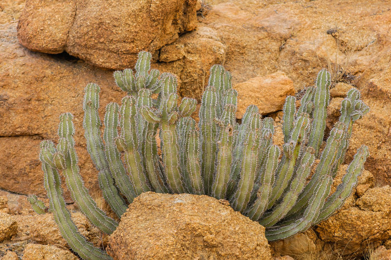 Paisajes africanos - Spitzkoppe Namibia foto de archivo