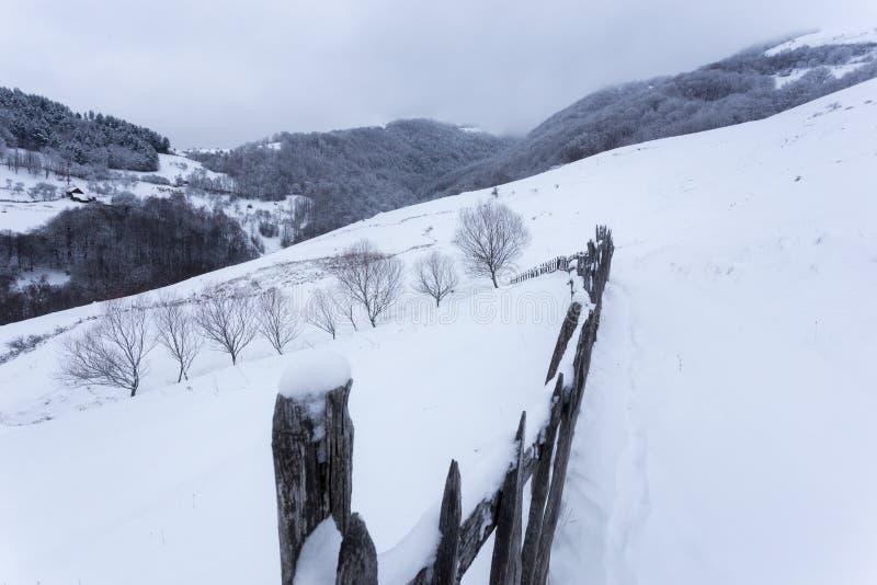 Paisajes congelados en un día muy frío en las montañas de Rumania imágenes de archivo libres de regalías