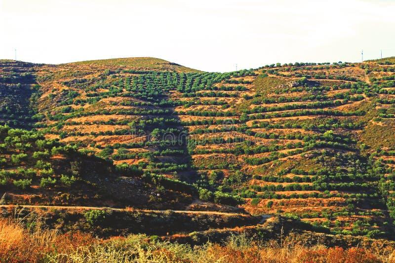 Paisajes de Creta imagen de archivo libre de regalías