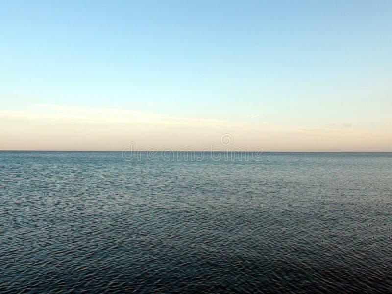 Paisajes de la flora del mar de Azov y del mar que igualan paisajes cerca de la ciudad de Primorsk de la región de Zaporizhzhya u imágenes de archivo libres de regalías