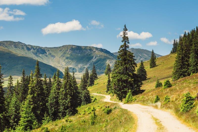 Paisajes de las montañas de Rodna en Cárpatos del este, Rumania fotos de archivo libres de regalías