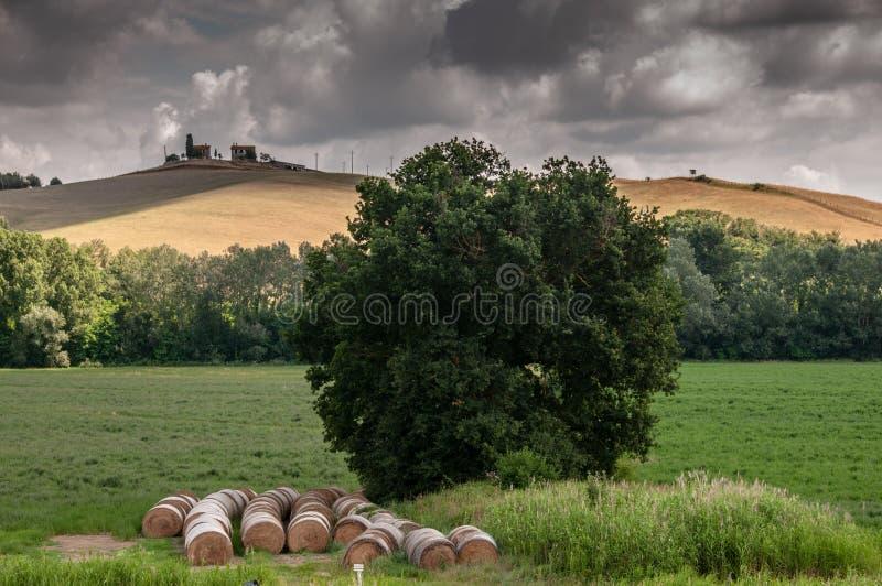 Paisajes de Toscana, Italia imagen de archivo