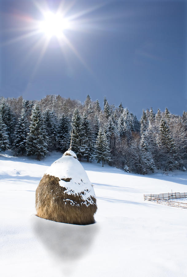 Paisajes del invierno foto de archivo libre de regalías
