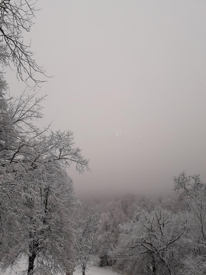 Paisajes del invierno por la mañana, Belgrado - Serbia fotos de archivo