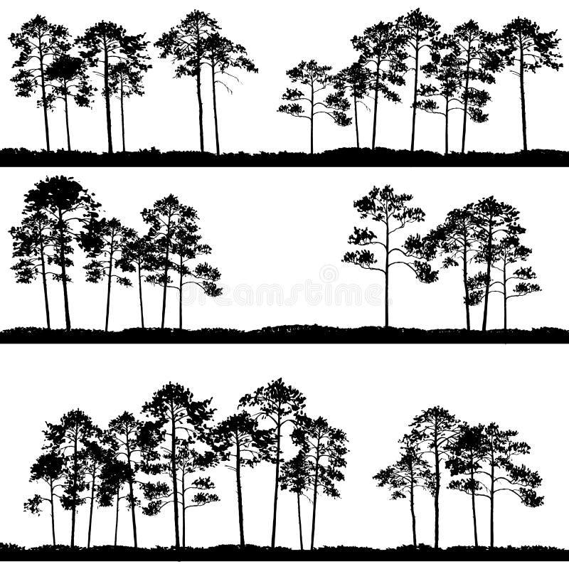 Paisajes del vector con los árboles de pino ilustración del vector