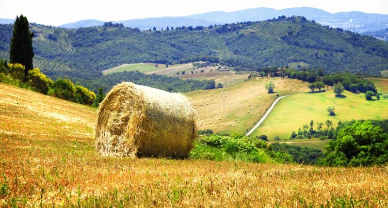 Paisajes escénicos de Toscana, Italia imagen de archivo