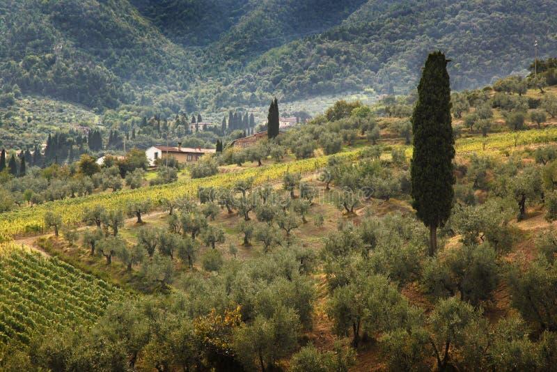 Paisajes famosos de Toscana en Italia fotos de archivo libres de regalías