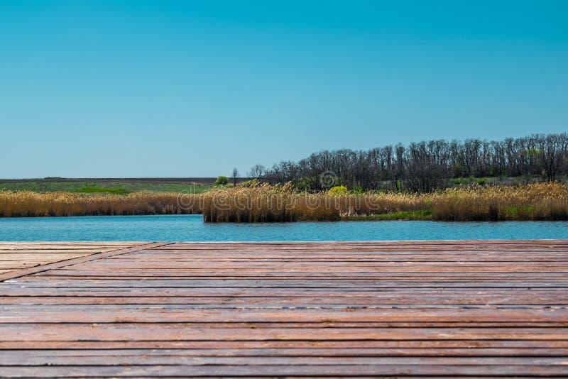 Paisajes hermosos de Rusia Región de Rostov Lugares coloridos Vegetación y ríos verdes con los lagos y los pantanos Bosques y mea foto de archivo libre de regalías