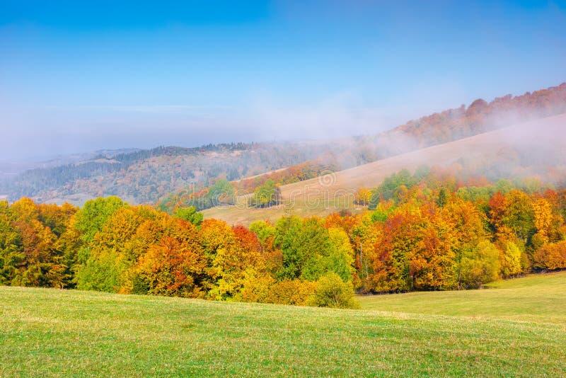 Paisajes montañosos nublados en otoño fotos de archivo libres de regalías