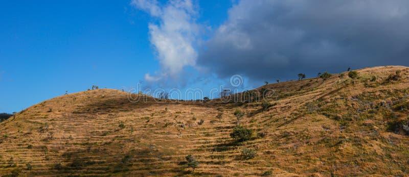 Paisajes tropicales de Savanna Hills en Nusa Penida, Bali - Indonesia imagenes de archivo
