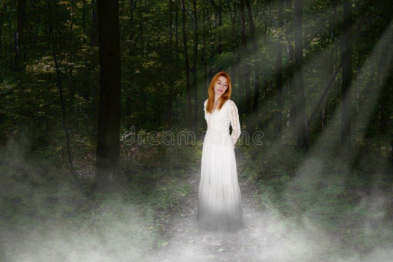 Paix, amour, espoir, amour, nature, belle jeune femme image stock