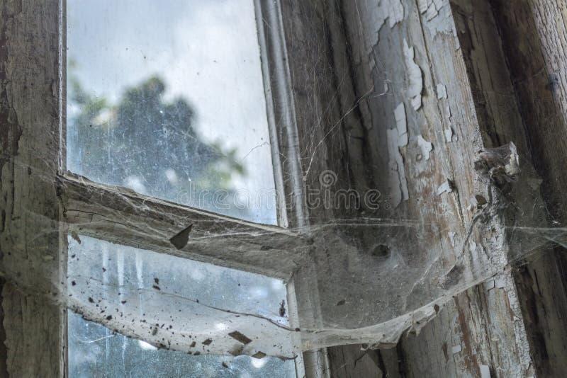 Pająk pajęczyna na starym okno obraz royalty free