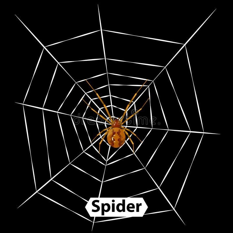 Pająk pajęczyny wektorowa ilustracja i odizolowywający ilustracji
